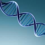 AMT zawiera porozumienie z Konsorcjum w sprawie klinicznego rozwoju nowatorskiej terapii genowej w leczeniu choroby Sanfilippo B
